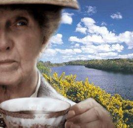 Mrs. Marple on the Riverside