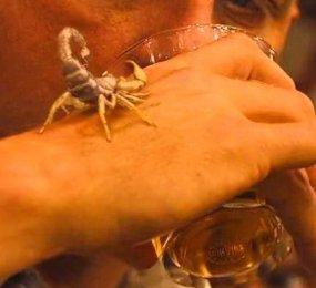 Skorpiókirály DVD