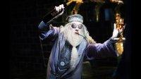 Dumbledore serege