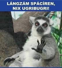Nix ugribugri